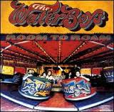 Waterboys Room To Roam