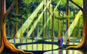 Narnia Pool