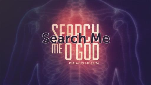 Search Me 2