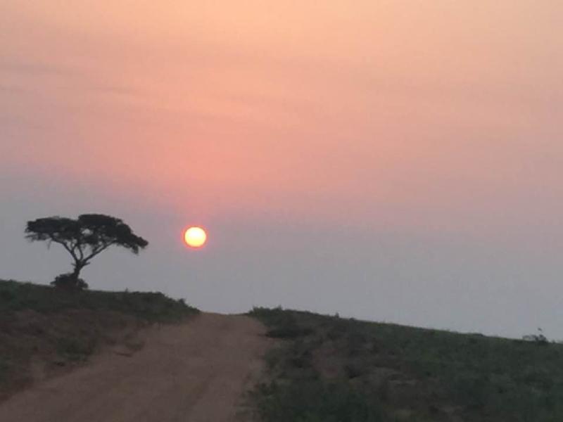 Murchison Sunrise