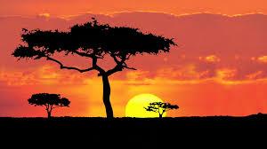 African Sun 2