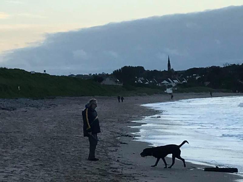 Stocki on beach