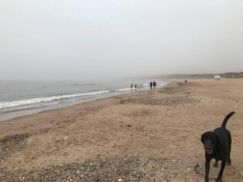Mist Hides Fair Head